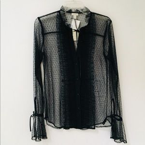 Sheer Swiss dot ruffled blouse